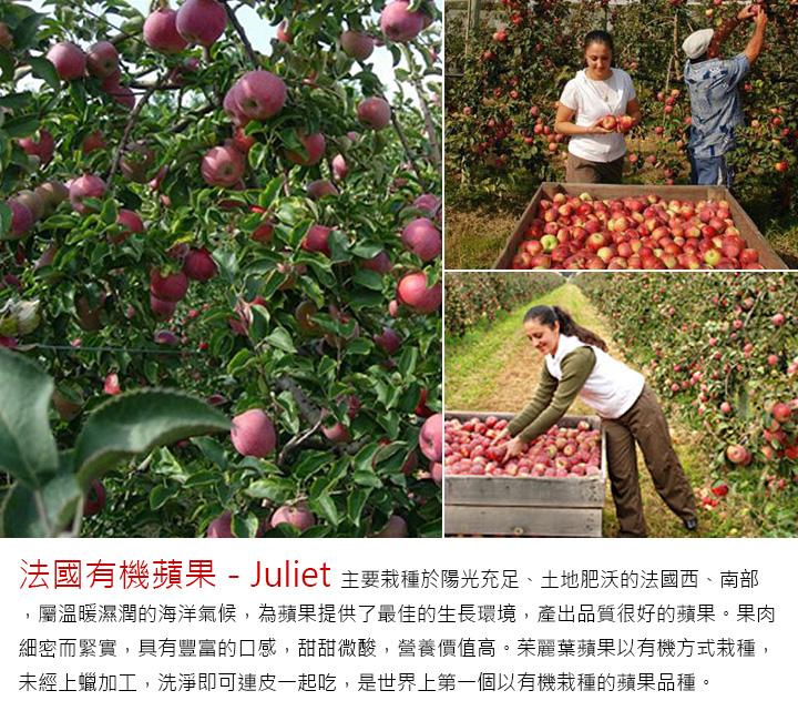 「法國有機蘋果-Juliet」 主要栽種於陽光充足、土地肥沃的法國西、南部,屬溫暖濕潤的海洋氣候,為蘋果提供了最佳的生長環境,產出品質很好的蘋果。果肉細密而緊實,具有豐富的口感, 甜甜微酸,營養價值高。茱麗葉蘋果以有機方式栽種,未經上蠟加工,洗淨即可連皮一起吃,是世界上第一個以有機栽種的蘋果品種