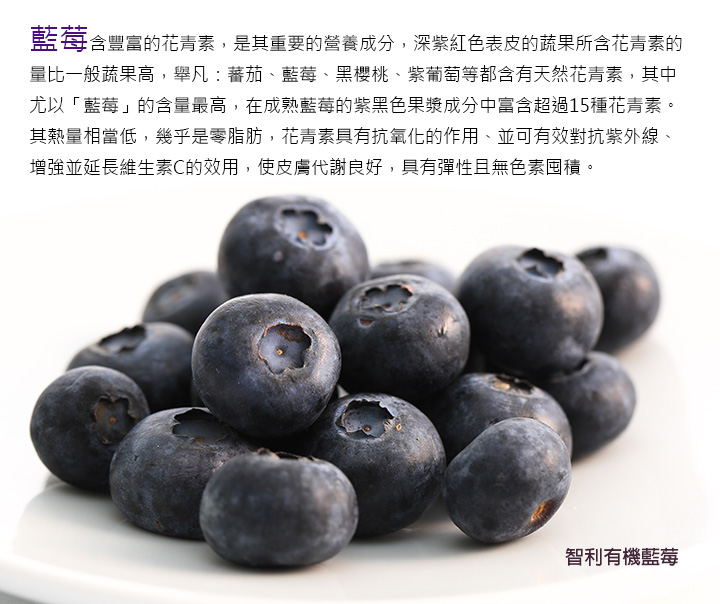 藍莓含豐富的花青素,是其重要的營養成分,深紫紅色表皮的 蔬果所含花青素的量比一般蔬果高,舉凡:蕃茄、藍莓、黑櫻桃、紫葡萄等都含有天然花青素,其中尤以「藍莓」的含量最高,在成熟藍莓的紫黑色果漿成分中富含 超過15種花青素。 其熱量相當低,幾乎是零脂肪,花青素具有抗氧化的作用、並可有效對抗紫外線、增強並延長維生素C的效用,使皮膚代謝良好,具有彈性且無色素囤積。