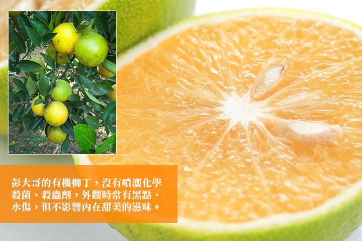 彭大哥的有機柳丁,沒有噴灑化學殺菌、殺蟲劑,外觀時常有黑點、水傷,但不影響內在甜美的滋味。